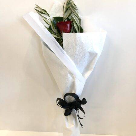Single long stemmed red rose