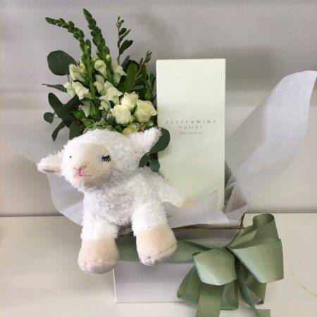 Baby Gift Box White