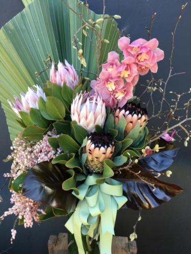 tall proteas and orchid